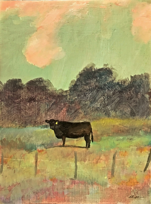 york ranch angus